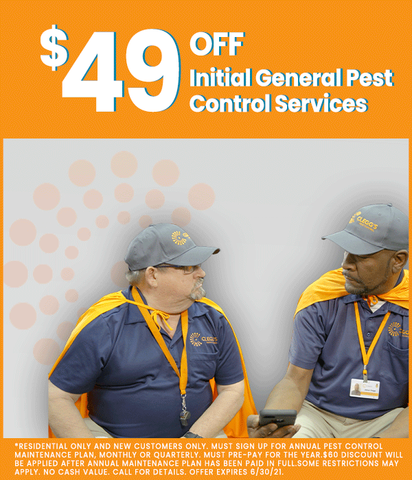 Clegg's_Pest_Control_March_Bed_Bug
